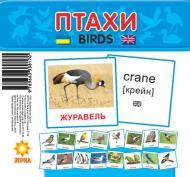 Міні-картки Зірка Птахи 72753