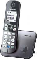 Телефон Panasonic KX-TG6811UAM Metallic