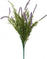 Рослина декоративна Лаванда HONGYE A7-03540 фіолетовий