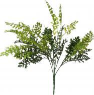 Рослина декоративна Сорго HONGYE A5-03550