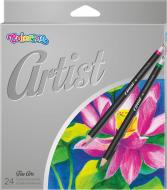 Олівці кольорові Artist 24 шт. 65221PTR Colorino