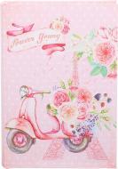 Скринька-книга Рожевий скутер 18x13x4 см