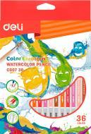 Олівці кольорові акварельні Color Emotion EС00730 36 шт. Deli