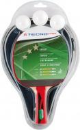 Набор для тенниса TECNOPRO Expert Pro Set Carry-Over 234235-900050