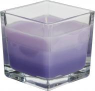 Свічка із запахом snk80-79 Лаванда Bispol