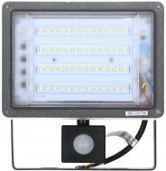 Прожектор Expert Light NC-F50-PIR 50 Вт IP65 чорний