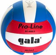 Волейбольний м'яч Gala BV4051SAE  р. 4