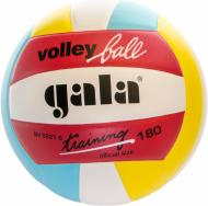 Волейбольний м'яч Gala Training BV5221SB  р. 5