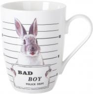 Чашка Sly Boy 350 мл фарфор Fiora