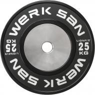 Диск для грифа Werksan DLIO103 Lionfit 25 кг