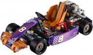 Конструктор LEGO Technic Міні-карт 42048