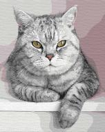 Картина по номерам Мой пушистый друг Идейка