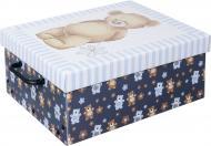 Скриня картонний Miss Space із кришкою Orsacchiotto Azzurro 160x300x370 мм