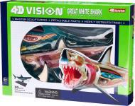 Об'ємна анатомічна модель 4D Master Велика біла акула 26111