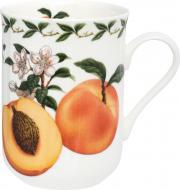 Чашка Apricot 320 мл PB8003 Maxwell & Williams