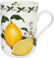 Чашка Lemon 300 мл PB8008 Maxwell & Williams