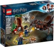 Конструктор LEGO Harry Potter Лігво Араґоґа 75950