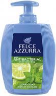 Рідке мило Paglieri Antibacterico Mint&Lime 300 мл