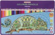 Олівці кольорові Premium 36 шт. CF15176