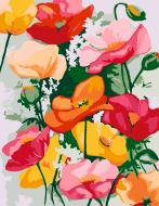 Картина за номерами Вишукані маки 35х45 см Rosa Start