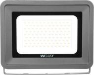 Прожектор Wolta WFL-100W/06 100 Вт IP65 чорний