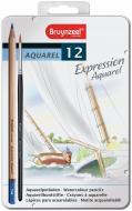 Олівці акварельні EXPRESSION 12 шт. Bruynzeel