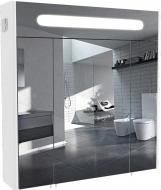 Зеркальный шкаф Aqua Rodos Париж 80 с подсветкой
