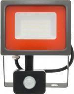 Прожектор з датчиком руху Jazzway PFL-SC 30 Вт IP54 сірий 5001411
