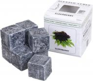 Кубики для аромалампы Scented Cubes Бузина