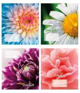 Комплект зошитів 24 аркуша в лінію Квітка Поліграфіст