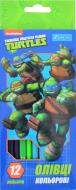 Олівці кольорові Ninja Turtles, 12 шт. 1 вересня