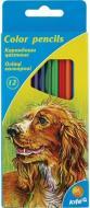 Олівці кольорові K15-051K, 12 шт. KITE