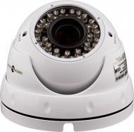 IP-камера Green Vision GV-055-IP-G-DOS20V-30 POE