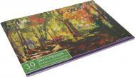 Альбом для малювання 30 аркушів 100 г/кв.м скоба ZB.1425 ZiBi