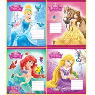 Комплект зошитів Міцар скоба 12 арк лінія Серія Princess 25 шт (249549)