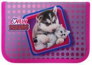 Пенал Lovely Friends 210/70D PL 20203 CLASS рожевий
