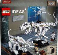 Конструктор LEGO Ideas Останки динозавра 21320