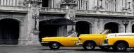 Плитка Tiger Albar avto жовтий декор 25x75