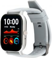 Смарт-часы Amico Go Fun Pulseoximeter and Tonometer grey (850474)
