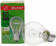 Лампа розжарювання  Belsvet A55 60 Вт E27 230 В прозора Б 60-5