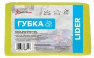 Губка автомобільна Lider 19х12х6 см 11-002 Poputchik