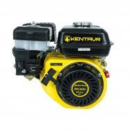 Двигун бензиновий Кентавр ДВЗ-200Б1