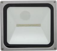 Прожектор Maysun DL-NS50 50 Вт IP65 сірий