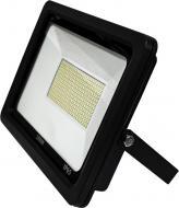 Прожектор Hopfen TA 11 LED 100 Вт IP65 чорний