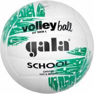 Волейбольний м'яч Gala SCHOOL BV5031LBE р. 5