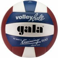 Волейбольний м'яч Gala BV5241SBE  р. 5