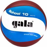 Волейбольний м'яч Gala BV 5711SB  р. 5