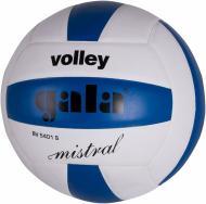 Волейбольний м'яч Gala BV5401SCE р. 5