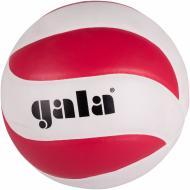 Волейбольний м'яч Gala BV5671SC р. 5