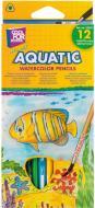 Набір олівців акварельні Aquatic Extra Soft 12 кольорів CF15157